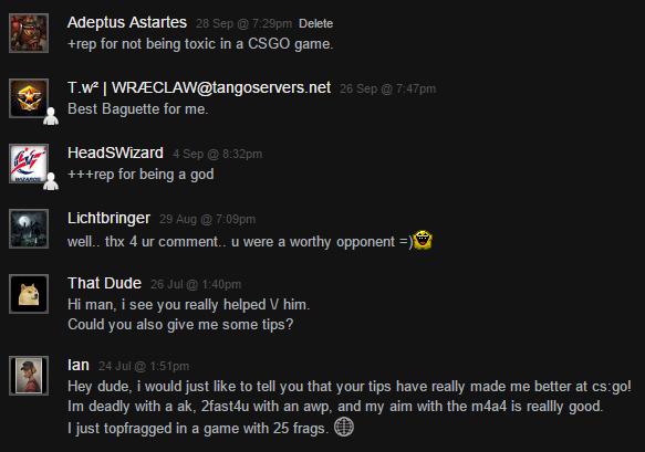 Quelques-uns des commentaires que des joueurs rencontrés ont écrit sur mon profil Steam