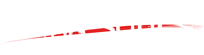 logo_white_twinsouls